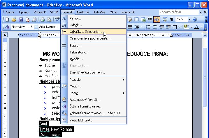 W-29-02-Format-Odrazky_a_cislovanie.png